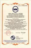 健康安全管理认证英文版.png